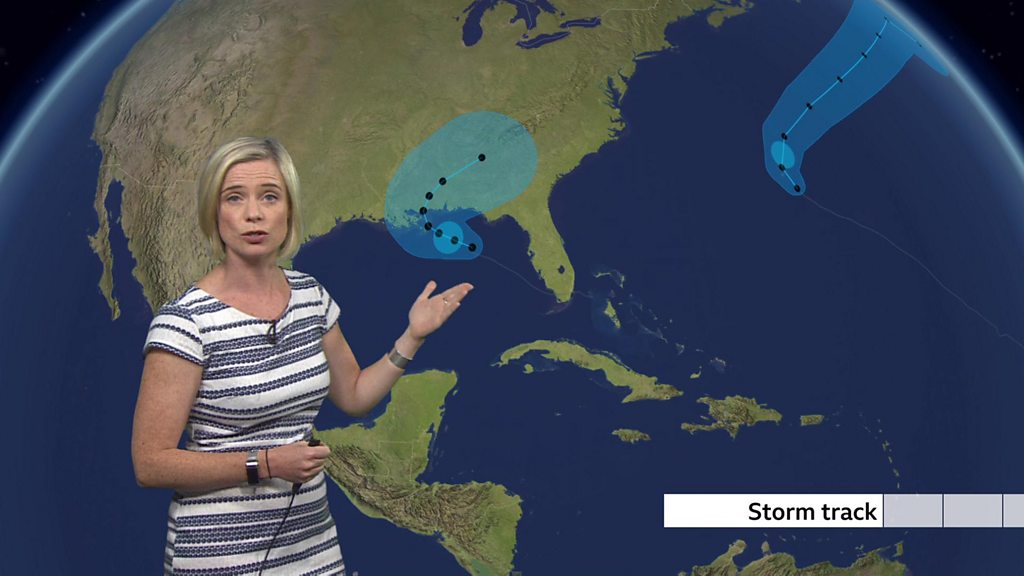 Hurricane Sally forms off US Gulf Coast, threatening southern states